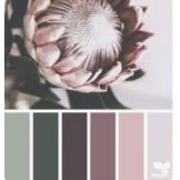 kleurpallet1