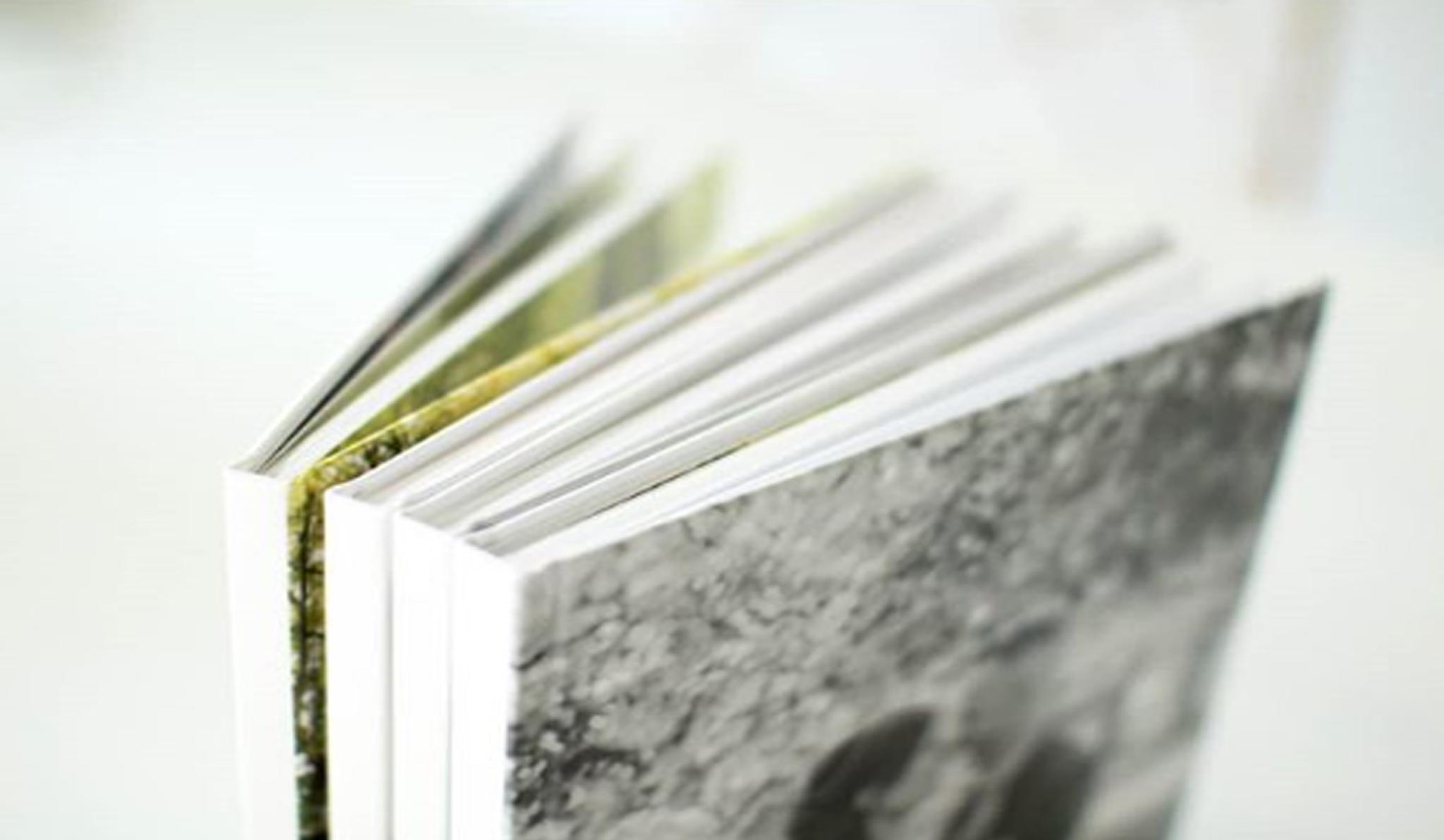 mini fine art album